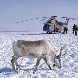 Северные районы России