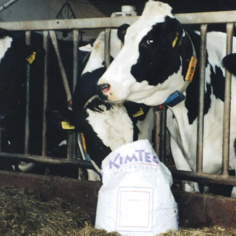 Биодобавки для откорма бычков