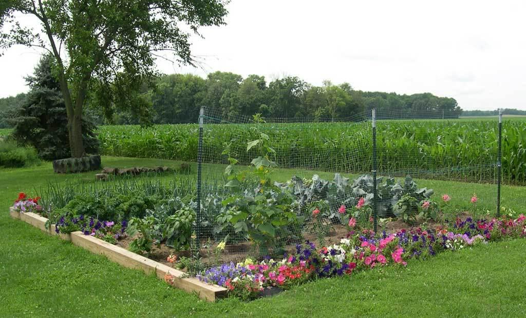 Приватизация садового участка