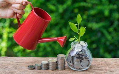 Рост денежных проектов
