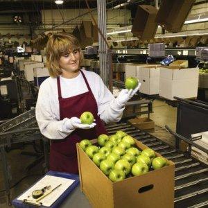 Получение зарплаты в продуктах