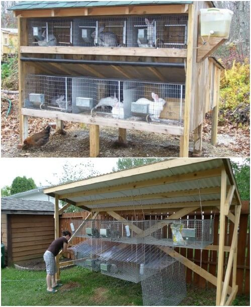 Оборудование кроличьей фермы
