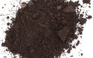 Плодородная земля с гумусом