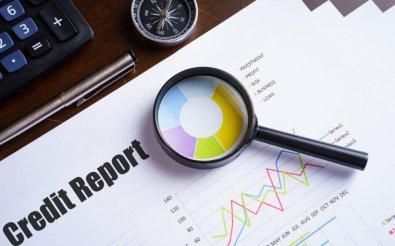 Отчеты по кредитам