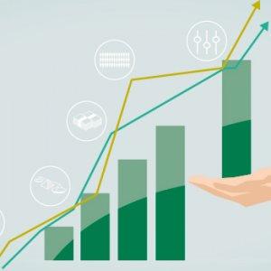 Срок выплаты дивидендов - нюансы для разных компаний и акционеров