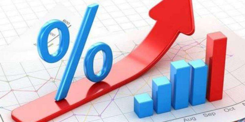 Виды ставок налогов и особенности их использования в жизни общества