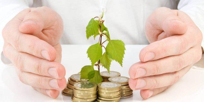 Выбор инвестиций под высокий процент при помощи анализа рисков