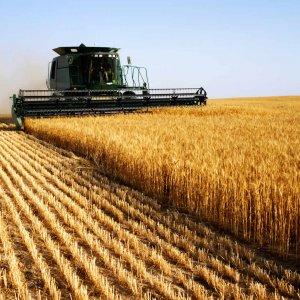 Сельскохозяйственный кооператив