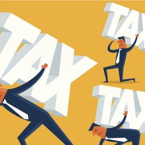 Налогоплательщики