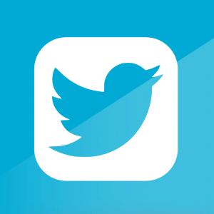 Как заработать в Твиттере деньги: способы, рекомендации и доходы