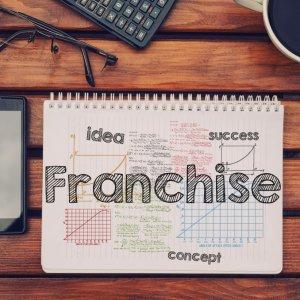 Понятие франшизы