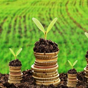 Прирост капитала