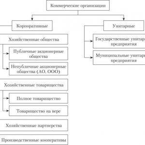 Правила действия основных организационных форм бизнеса в России в 2019