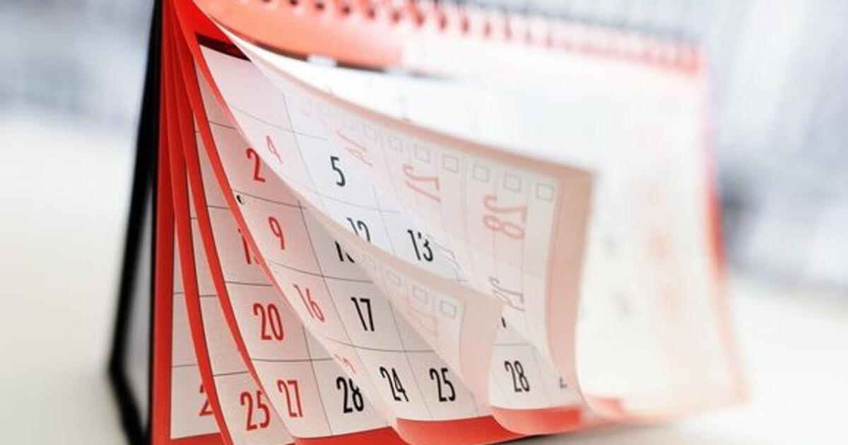 Дата сдачи отчетности