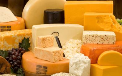 Успешный сырный бизнес