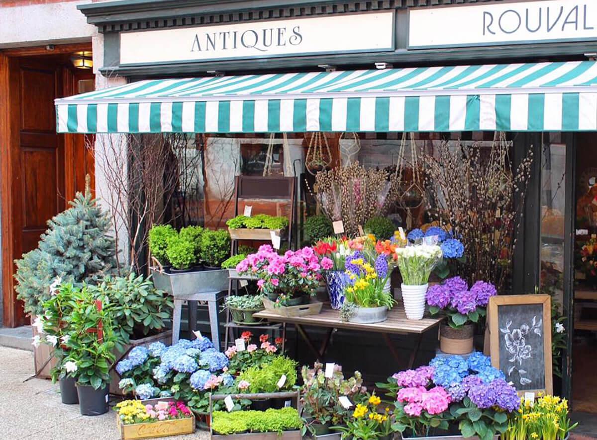 Магазин с комнатными цветами