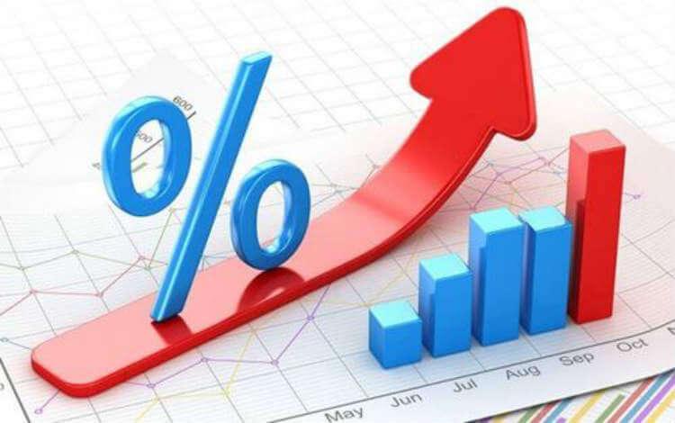 Процентные ставки налогов
