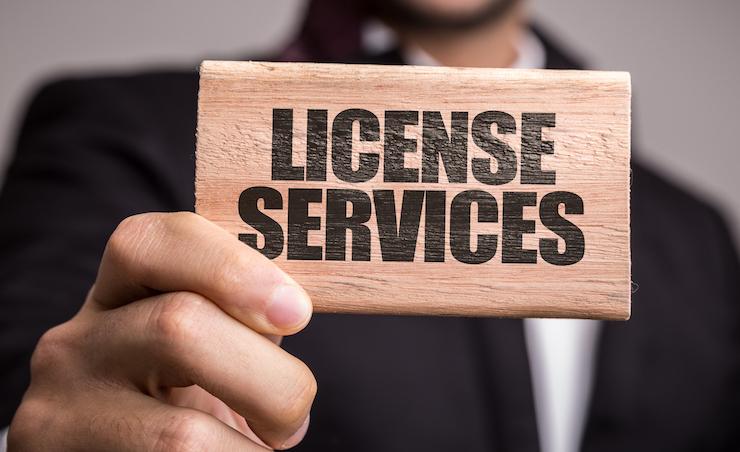 Лицензируемые виды бизнеса