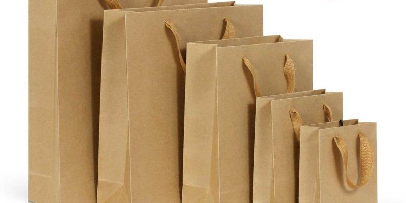 Стоит ли инвестировать средства в изготовление бумажных пакетов