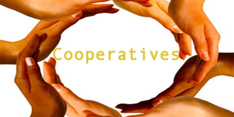 Что такое кредитный потребительский кооператив: задачи и виды